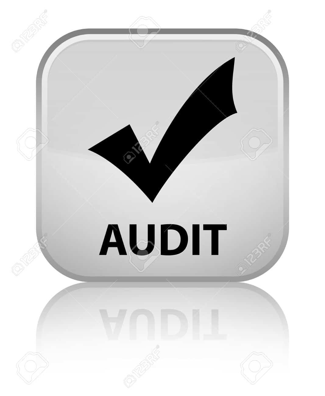 solutions services audit